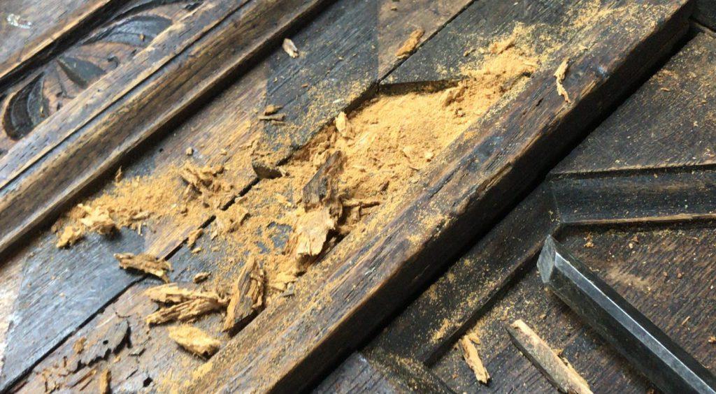 Houtwordn schade aan antieke meubelen